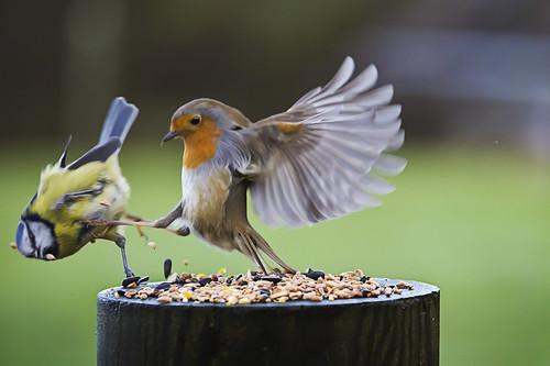 Casse toi de là !