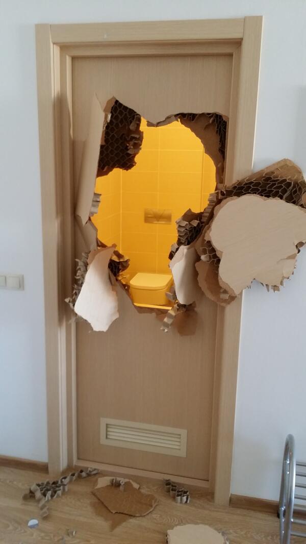 Enfermé dans les toilettes, il défonce tout !