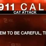 911-chat-attaque-bebe-police-portland-usa-etats-unis
