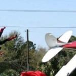 avion-percute-parachutiste-plein-vol-cesnna
