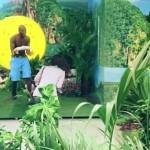 tire-chasse-eau-toilette-pub-paradis