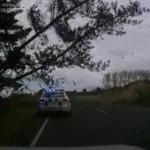 policier-arbre-tombe-dessus-omg