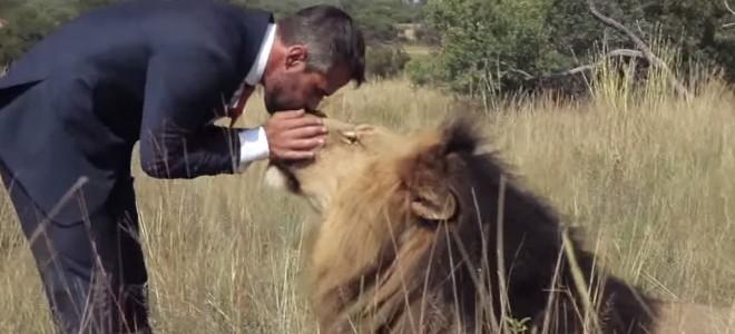 Il joue au football avec des lions