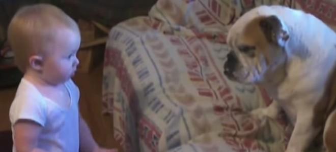 Un bébé pas content dispute son chien
