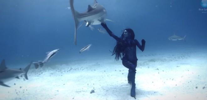Une femme danse avec des requins tigres
