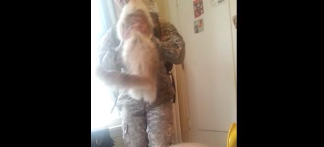 Un chat très heureux de retrouver son maître après une longue absence