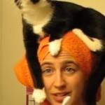 chat-envahissant
