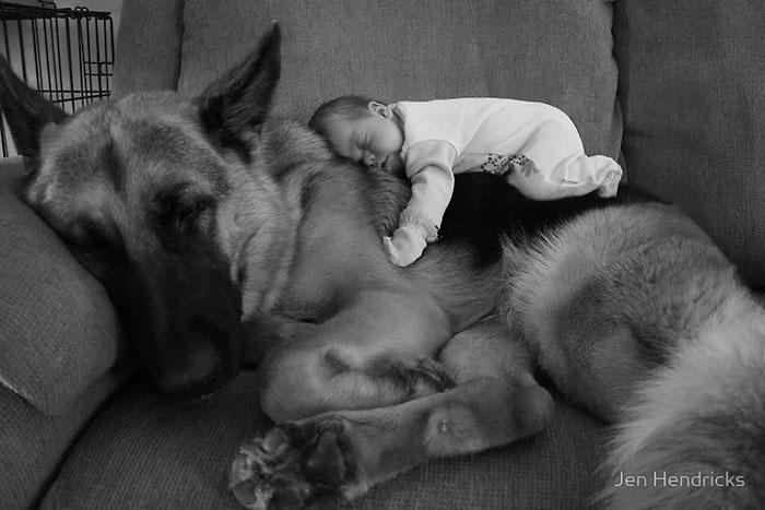 enfant-grand-chien-1