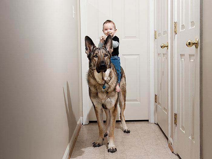 enfant-grand-chien-14