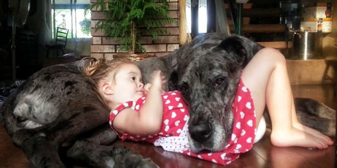 Des enfants posent avec leur grand chien