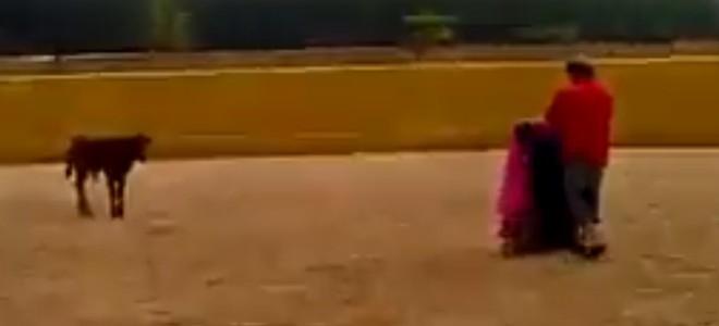 L'apprentissage de la tauromachie