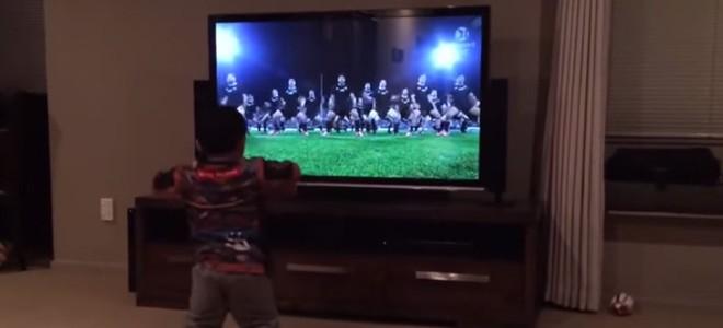 Un bébé imite les All Blacks et fait le Haka devant sa télé