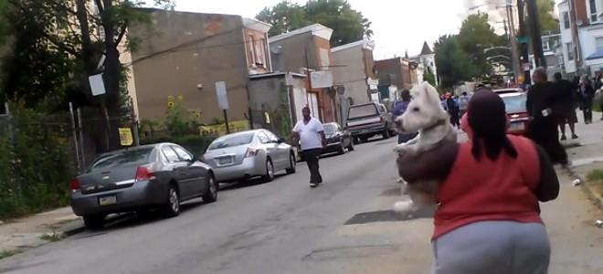 Un chien trolle sa maîtresse pendant un dynamitage