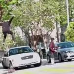 skate-milton-martinez-immeuble-chute-voiture