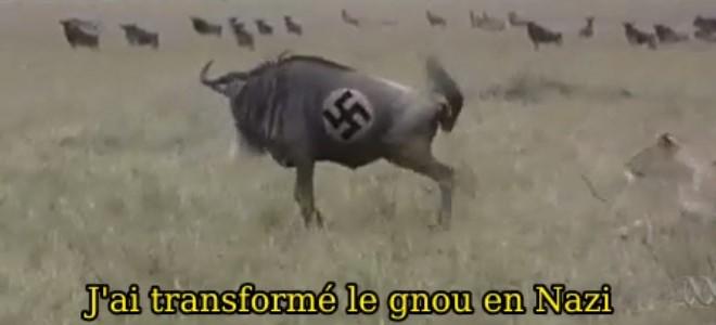 Gnou Nazi