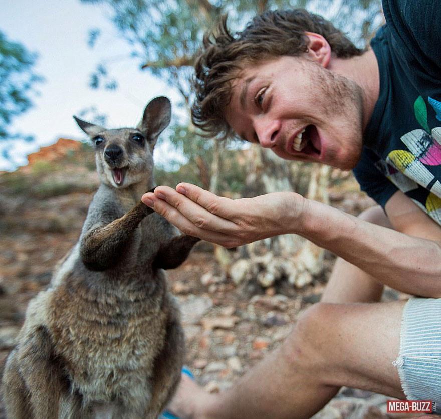 selfie-animaux-11