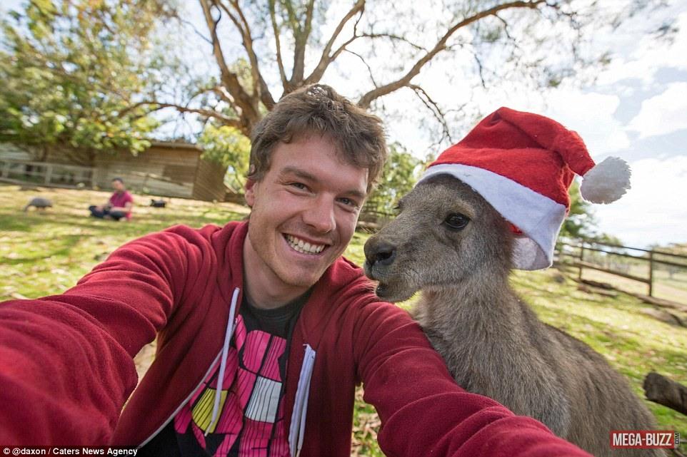 selfie-animaux-14