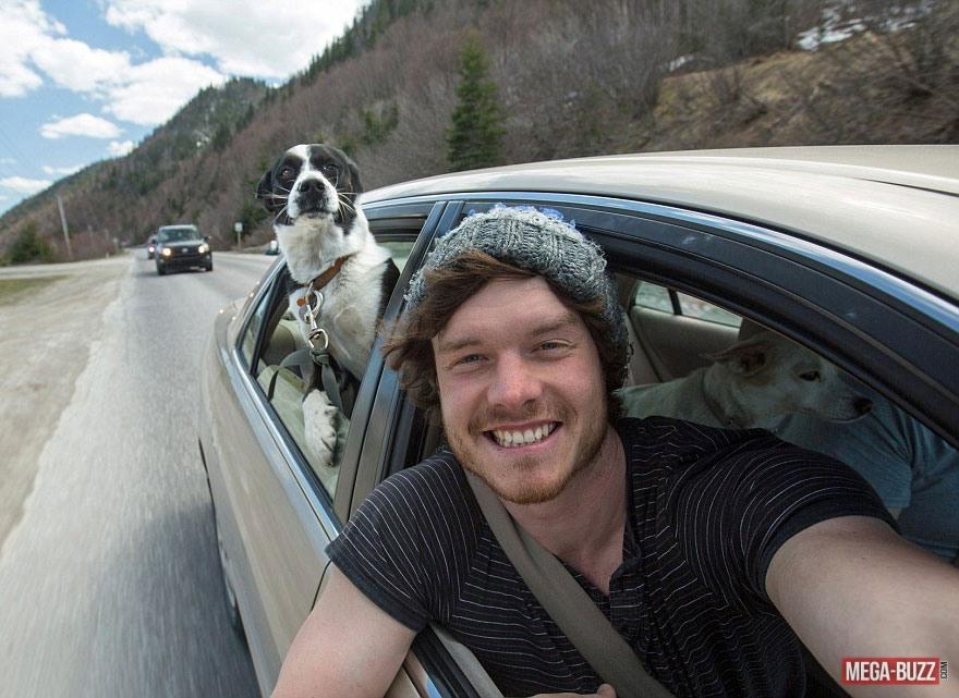 selfie-animaux-7