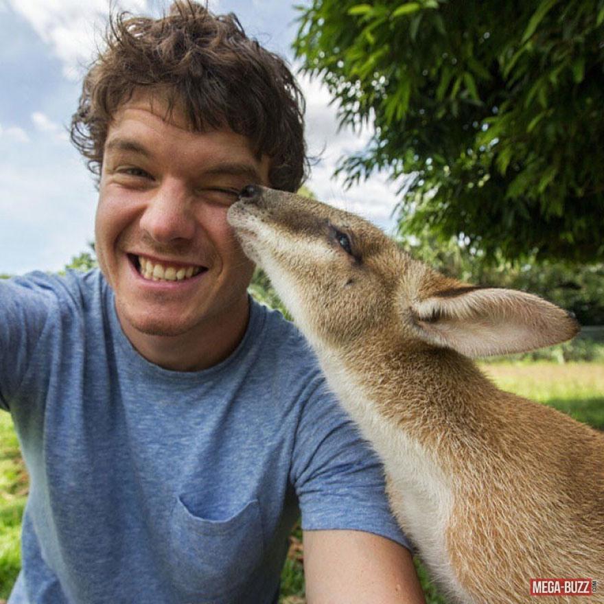 selfie-animaux-8