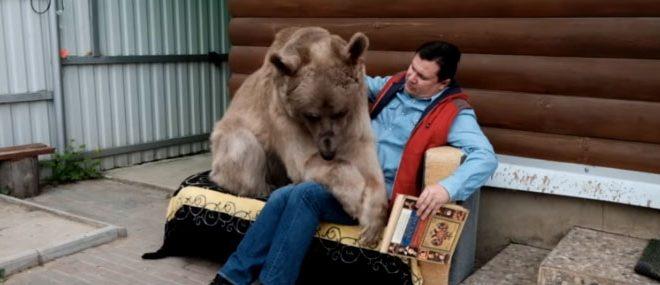 Un couple russe vit avec un ours depuis 23 ans