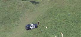Un membre d'équipage d'un hélicoptère de police plaque un suspect