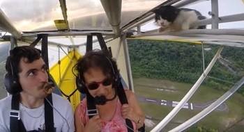 Vidéo :Petite incruste dans un deltaplane…