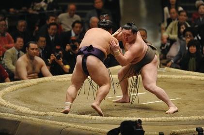 Impressionnant : un sumo se fait mettre KO en une petite seconde !